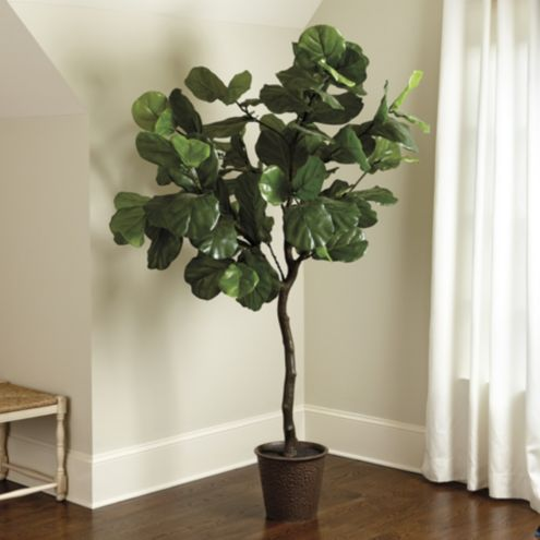 Bunny Williams Faux Fiddle Leaf Fig Tree Ballard Designs