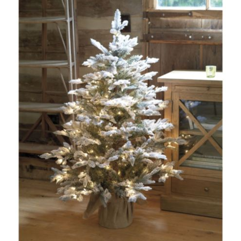 Suzanne Kasler Flocked Frasier Fir Tabletop Tree | Ballard Designs ...