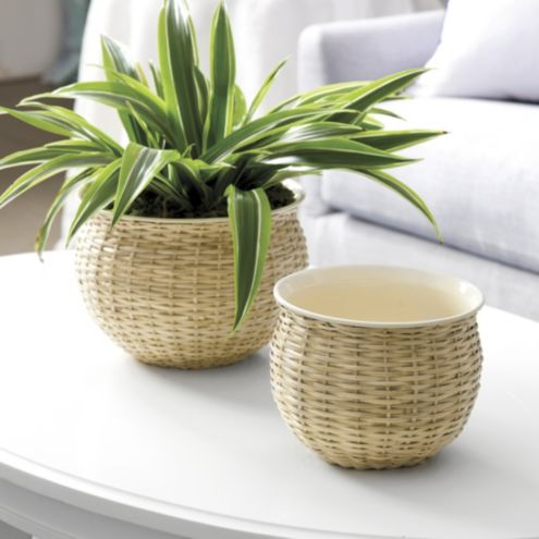 Enamel and Wicker Plant Pot Set