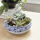 Blue & White Porcelain Accent Bowl