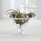 Victoria Glass Compote