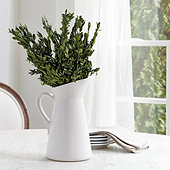Preserved Boxwood Bunch