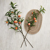Peach Stems - Set of 3