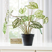Faux Potted Dasheen Leaf