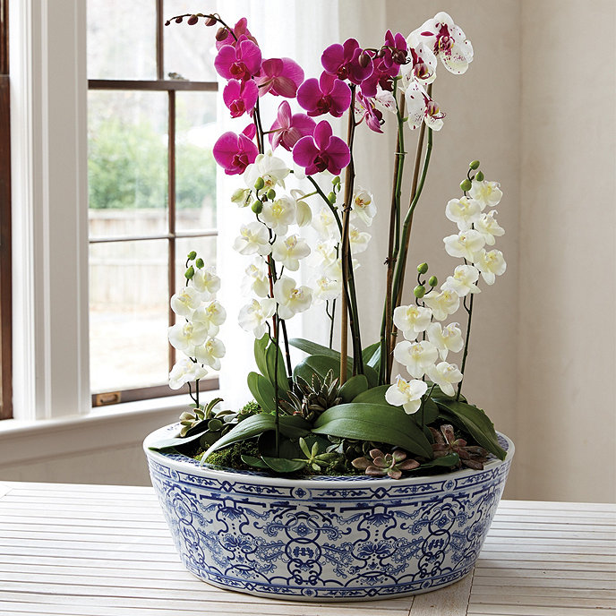 Blue White Chinoiserie Planter Product 2