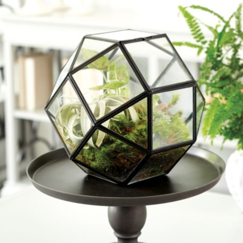 Geo Octagon Glass Terrarium