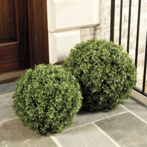 Faux Boxwood Planter Filler Ballard Designs