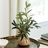Olive Branches in Burlap