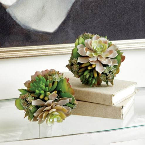 Succulent Sphere Accent Piece