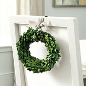 Preserved Boxwood Mini Wreath