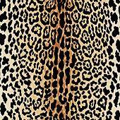 Serengeti Camel Fabric by the Yard
