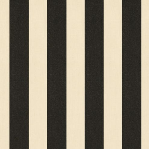 Canopy Stripe Black/Sand Sunbrella® Fabric by the