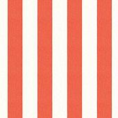 Canopy Stripe Coral/White Sunbrella® Fabric by the Yard