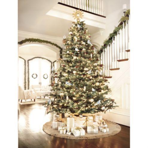 Noble Fir Christmas Tree Ballard Designs