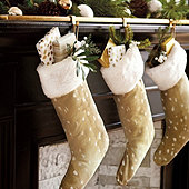 Antelope Stocking