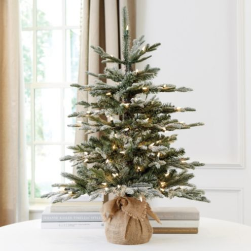 Suzanne Kasler 3' Flocked Frasier Fir Tabletop Tree | Ballard ...