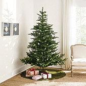 Prelit Grandis Fir 7' Tree