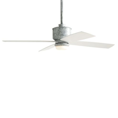 Carter Indoor/Outdoor Ceiling Fan - White