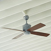 Carter Indoor/Outdoor Ceiling Fan