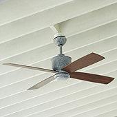 Carter Indoor/Outdoor Ceiling Fan