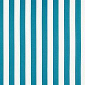 Canopy Stripe Bermuda/White Sunbrella Swatch