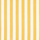 Canopy Stripe Lemon/White Sunbrella Swatch