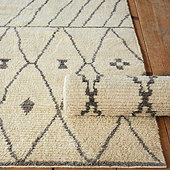 Lucas Hand Knotted Rug
