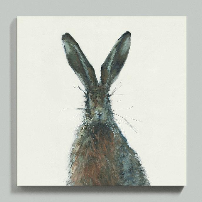 Henri the Hare Framed Canvas   Ballard Designs on