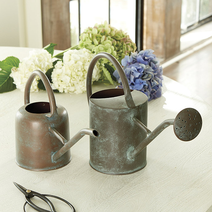 Are Copper Watering Cans Good For Plants: Copper Watering Can