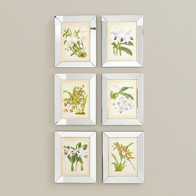 Orchids In Mirror Frame Art | Ballard Designs
