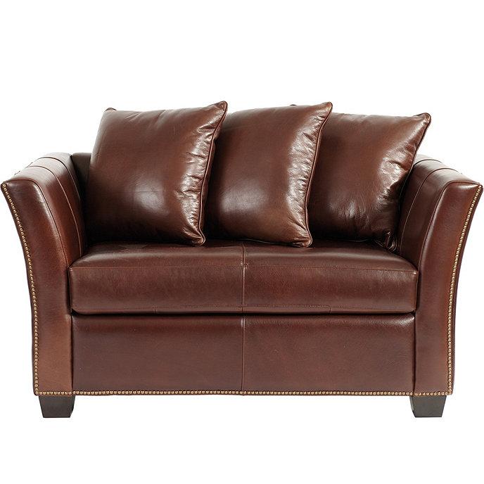Astounding Leather Twin Sleeper Sofa Dailytribune Chair Design For Home Dailytribuneorg