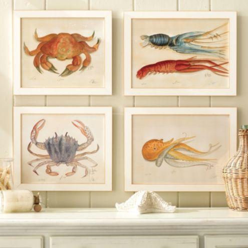 Ocean Life Water Color Prints Ballard Designs