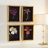 Poppy Shadow Boxes