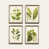 Heines Leaf Art