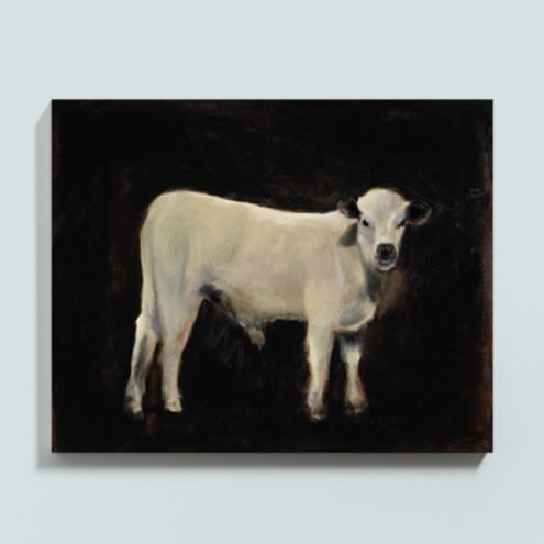 Mango the Cow Stretched Canvas 40