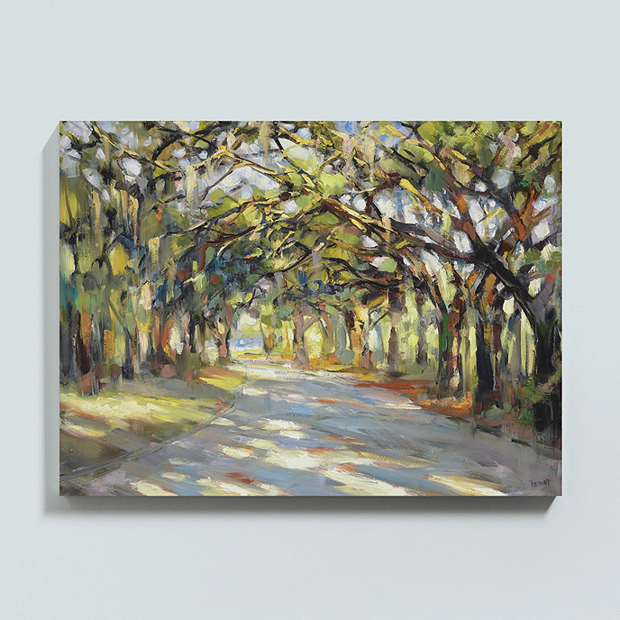 Southern Oaks Stretched Canvas