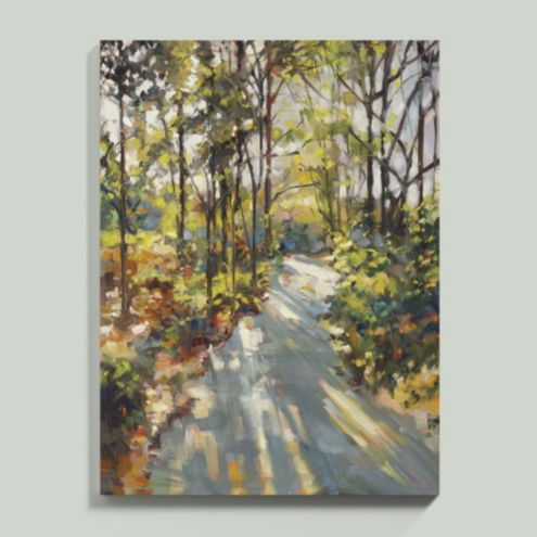 A Sunlit Stroll Stretched Canvas
