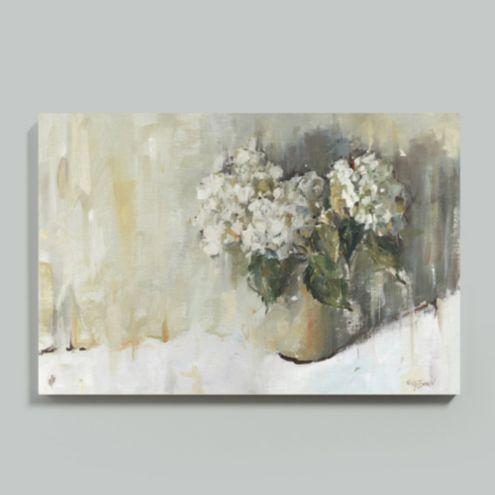 Hydrangea Study Stretched Canvas