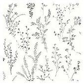 Botanical Stem Wallpaper