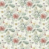 Dorothea Bloom Wallpaper