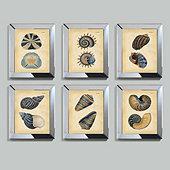 Indigo Mirrored Shells Framed Print