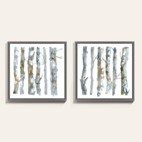 Birch Trees Study Framed Art Print