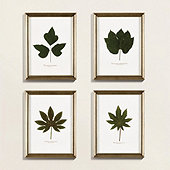 Petite Pressed Leaf Art