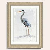 Watercolor Heron Art