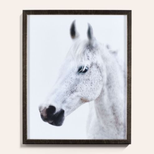 Majestic Horse Framed Photo Wall Art
