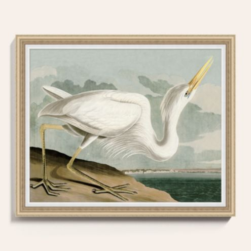 Heron on the Bay Framed Art Print