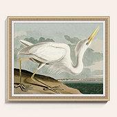 Heron on the Bay Art