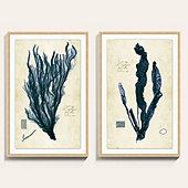 Vintage Seagrass Art