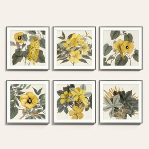Flourishing Botanicals Yellow Floral Art Print Series