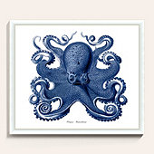 Pacific Octopus Art